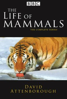 The Life of Mammals TV mini-series