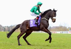 Pat Smullen and Harzand head for the start at Leopardstown Racecourse in flying form.