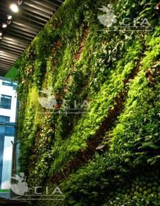 China Artificial Green Wall Living Wall Vertical Garden Artificial Plants Wall Panel Small Artificial Plants Artificial Plants Outdoor Artificial Plants Decor