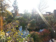 Okc Home Garden Show