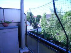 zeigt her eure gesicherten balkone ausl ufe gehege. Black Bedroom Furniture Sets. Home Design Ideas