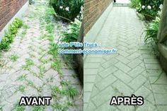 Avant après désherbant naturel mieux que round up Lawn And Garden Herb Garden, Lawn And Garden, Home And Garden, Weed Killer, Yard Landscaping, Garden Planning, Horticulture, Kids And Parenting, Clean House