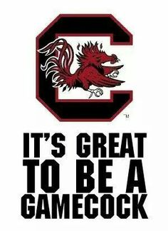 Still is no matter what Gamecock Nation, Gamecocks Football, Carolina Panthers Football, University Of South Carolina, South Carolina Gamecocks, Game Fowl, Artsy Background, Softball Crafts, Spirit Gifts