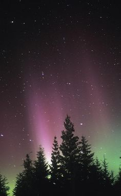 ✮ Northern Lights
