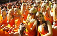 Netherlands fans__Football World cup, Brazil Soccer Fans, Soccer World, Football Fans, Football Players, Steven Gerrard, Premier League, Hot Fan, World Cup 2014, Fifa