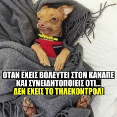Όντως.... Greek Memes, Funny Greek, Very Funny Images, Funny Pictures, Funny Texts, Funny Jokes, Hilarious, Sarcasm Humor, Mom Humor