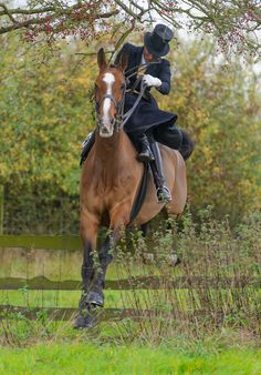 Quorn Hunt Opening Meet. Photo by Nico Morgan Photography
