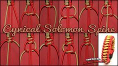 Cynical Solomon Spine Tutorial                                                                                                                                                                                 Mehr