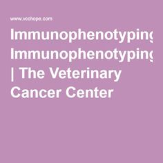 Immunophenotyping | The Veterinary Cancer Center