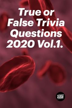 Actually Viral welcomes you to True or False General Questions Quiz - Trivia Questions and Answers 2020 Have fun, share with family and friends. True Or False Questions, Trivia Questions And Answers, Funny Questions, Question And Answer, Friends Trivia, Paper Games, Fun Quizzes, Brain Teasers, Funny Facts