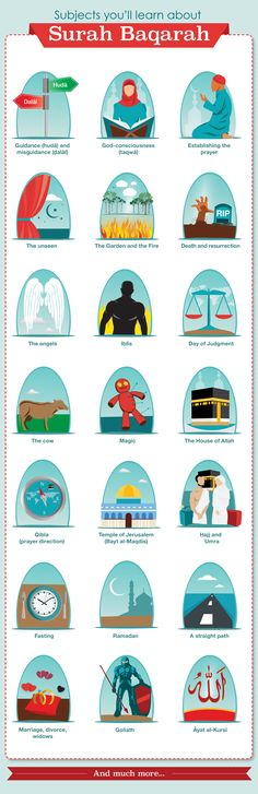 Bayyinah_Infographic_Project_Part_1_Final