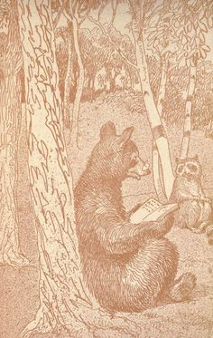 Clarence Hawkes, Field and forest friends; a boy's world and how he discovered it (1913)
