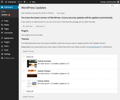managing your wordpress site