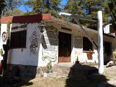El Hogar de las Abejas, El Manzano