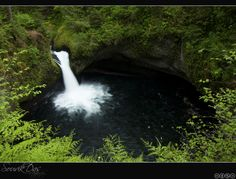 3. Eagle Creek Trail to Punchbowl Falls  - in the Columbia River Gorge area. Possible hike for Michalk Reunion 2017.