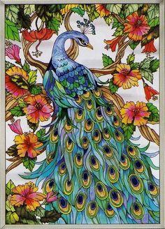 Peacock-11x15.jpg 559×777 pixels