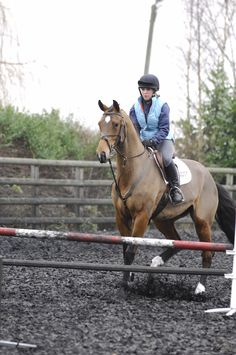 How can I stop my horse refusing?