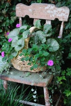 Basket planter on a shabby chair
