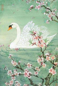 Swan and Cherry Blossom pieces) Japanese Painting, Chinese Painting, Chinese Art, Japanese Art, Swan Painting, Swans, Bird Art, Ghibli, Beautiful Birds