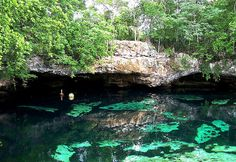 Cenotes by pamemake, via Flickr