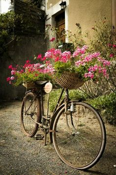 Vintage bicycle - baskets of flowers front and back. via The Basket Bike Girl® Old Bicycle, Bicycle Art, Old Bikes, Bicycle Design, Photo Velo, Fleur Design, Deco Floral, Vintage Bicycles, Garden Art