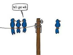 Free Wifi or Not !