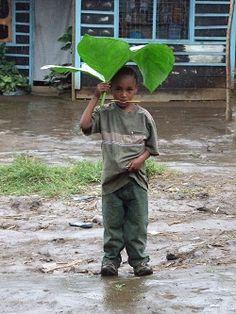 schuilen tegen de regen, Tanzania.