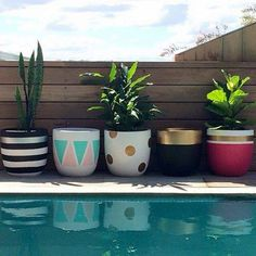 Design Twins' new pots are perfect for indoor plant trend - The Interiors Addict
