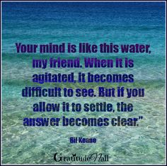 """Black Belt Soul Training Tip: """"Your mind is like this water my friend. When it is agitated it becomes difficult to see. But if you allow it to settle, the answer becomes clear."""" Bil Keane's commonsense wisdom helps us to activate our worrier to warrior spirit of a clear mind, peaceful heart. FunZen Girls  http://funzenbakery.com/"""