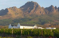 South Africa: Stellenbosch In South Africa's Western Cape, Stellenbosch is just 30 miles from Cape Town. Along the stunning Stellenbosch Wine Route are 130 wineries. Tourism In South Africa, South African Wine, Wine Tourism, Adventure Activities, Places Of Interest, Best Places To Eat, Holiday Destinations, Wine Country, Vacation Spots