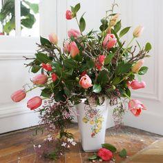 Camélia, tulip