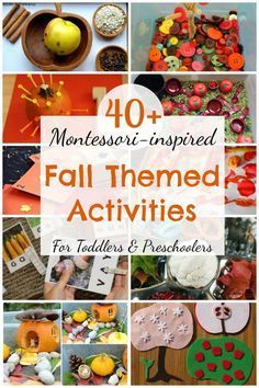 40 Montessori inspired themed activities for toddlers and preschoolers