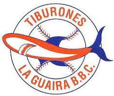 Resultado de imagen para Tiburones de la guaira