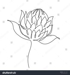 Protea Flower Line Drawing Vector Illustration Stock Vector (Royalty Free) 1483177037 Simple Flower Drawing, Flower Line Drawings, Botanical Line Drawing, Flower Sketches, Floral Drawing, Protea Art, Protea Flower, Globe Tattoos, Stencil Art