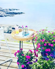 Terrace by the ocean 🌊 keeps the mind calm Outdoor Flowers, Terrace Garden, Summer Flowers, Outdoor Furniture, Outdoor Decor, Outdoor Gardens, Cottage, Ocean, Inspiration