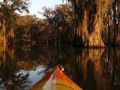 Kayak through otherworldly scenery at Caddo Lake in Texas.