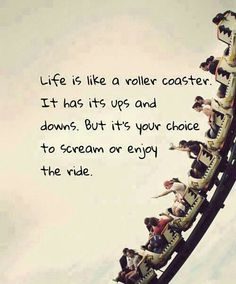 Rollercoaster quote