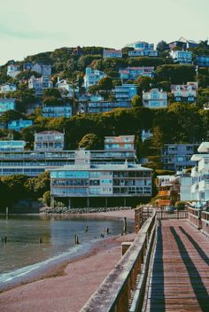 Worth a trip ~ Sausalito, California Marin County California, Sausalito California, California Usa, San Francisco Travel, San Francisco California, Golden State, The Places Youll Go, Places To Visit, Costa