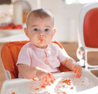 Which foods when? Baby's first foods. Myth and facts