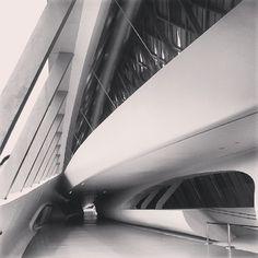 Puente del agua Zaragoza