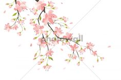 Branch with Pink Flowers - Wall Mural & Photo Wallpaper - Photowall
