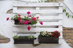 Pallet Gardening Ideas – How To Grow A Pallet Garden | Gardening Know How