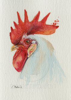 White Leghorn -  5 x 7  The classic rooster - an Original Watercolor (unframed). $45.00, via Etsy.