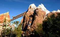 Expedition Everest — Legend of the Forbidden Mountain is a steel roller coaster built by Vekoma at Disney's Animal Kingdom theme park at the Walt Disney World Resort in Lake Buena Vista, Florida. Walt Disney World Rides, Disney World Vacation, Disney World Resorts, Disney Vacations, Disneyland Rides, Family Vacations, Family Travel, Disney Animal Kingdom, Attractions In Orlando