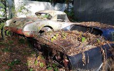 Gallery - corvette behind barn