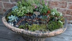Fairy garden planter. by bettye