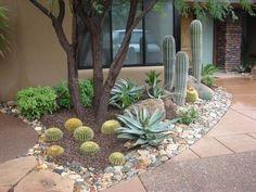Front yard az landscape | Arizona Landscaping Ideas