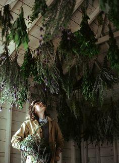 kinfolk magazine - s. velten by parker fitzgerald Kinfolk Magazine, Witch Aesthetic, New Energy, Growing Herbs, Herb Garden, Fruit Garden, Dried Flowers, Preserves, Herbalism