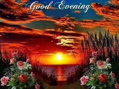 8 Best Good Evening Greeting Images Buen Dia Good Evening