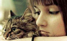 Come curarsi con i gatti, i felini più amati fin dagli antichi Egizi I superpoteri dei nostri gatti: fantasia oppure realtà? Dagli antichi Egizi fino ad oggi, le capacità dei nostri amici a quattrozampe di curare i disturbi più comuni, dall'artrite allo stress. #salute #animali #gatti #medicina #natura